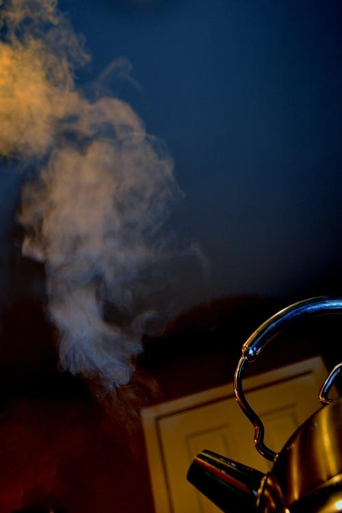 Vildana Ramic, Steam, photography